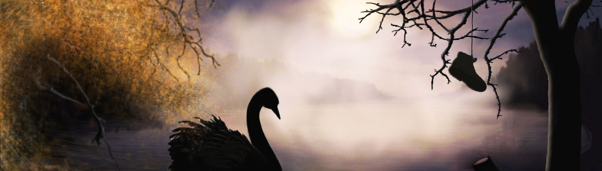 black swan swimming towards moonlight